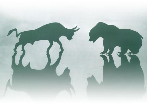 toro forex trading